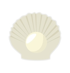 Sea shell mollusks vector