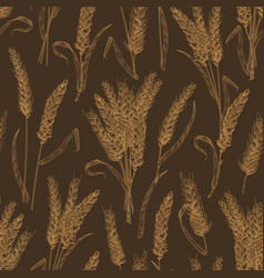 Seamless pattern with wheat ears or spikelets on vector