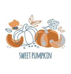 Sweet pumpkin hand drawn flat design vector