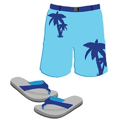 Shorts and slippers vector image vector image