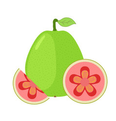 Guava exotic fruit whole slice in flat cartoon vector