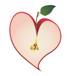 Apple as heart vector