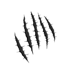 Five vertical trace of monster claw vector