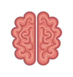 brain cartoon icon graphic isolated vector image