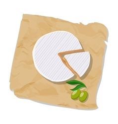 Disk and piece of Camembert on the paper Isolated vector image vector image