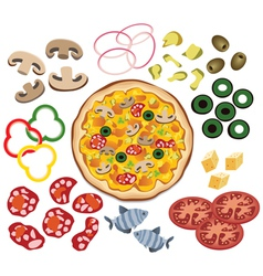 pizza and ingredients vector image
