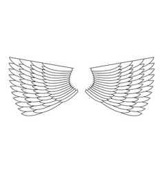 Angel wings isolated white feather wing of bird vector