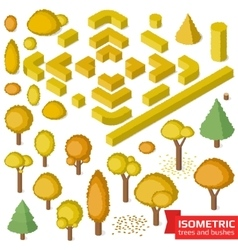 Isometric autumn trees hedge and bushes vector