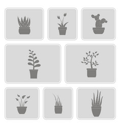 Monochrome set with house plants icons vector