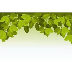 Nature background with ivy leaves vector image