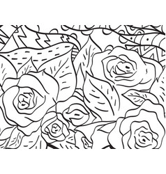 pattern flower rose coloring for adults vector image