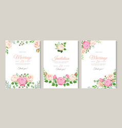 wedding card with roses red white and pink roses vector image