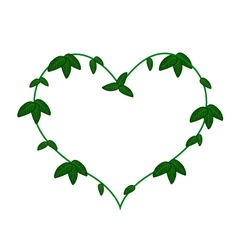 Green Vine Leaves in A Heart Shape Wreath vector image vector image