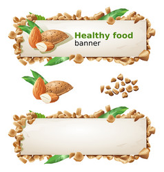 set banners with almond and ground nuts vector image vector image
