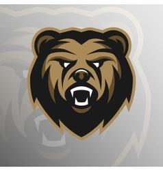 Angry Bear symbol emblem sport logo vector image vector image