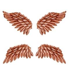 Bird Wing Set vector