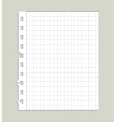 Blank ripped paper vector