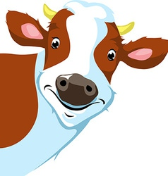 Cow peeking vector