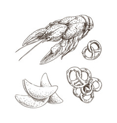 Graphic art of crayfish with chips and pretzel vector