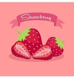Strawberry Slice Fruit Banner vector image vector image