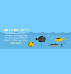types of marine fish banner horizontal concept vector image