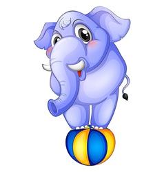 An elephant above bouncing ball vector