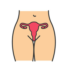 Female reproductive system color icon vector