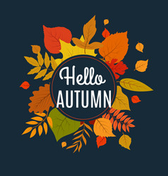Hello autumn background with fall leaves nature vector