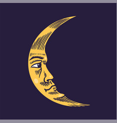mystical crescent moon astronomy alchemy and vector image
