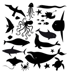 set marine animals vector image