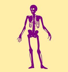 skeleton doodle clipart vector image