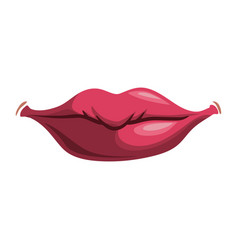 sexy women lips vector image