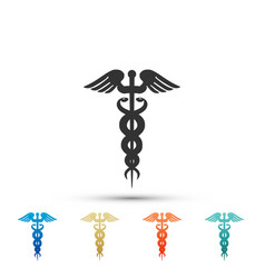 caduceus medical symbol icon isolated vector image