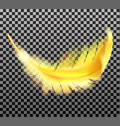 Color golden fluffy feather realistic vector