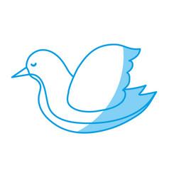 Dove bird icon vector