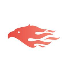 eagle fire bird logo icon vector image