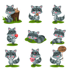 Flat set with adorable raccoon in different vector