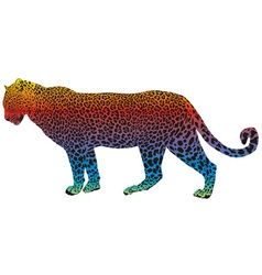 leopard - abstract rainbow vector image