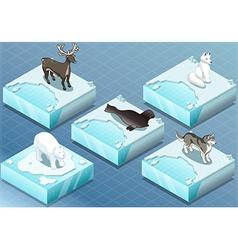 Isometric Arctic Animals on Ice vector image vector image