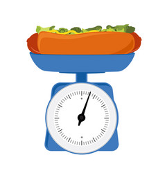 concept of weight loss unhealthy lifestyles fast vector image