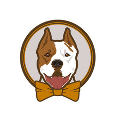 Pitbull boxer head dog mascot in bow-tie vector