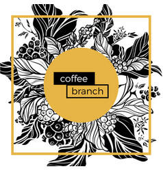 template coffee branches vector image