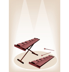 Two retro xylophone on brown stage background vector