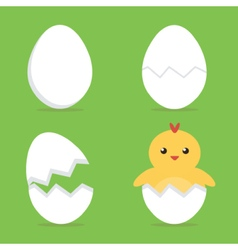 Baby chick hatching from the egg process vector image