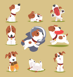 cute little puppy in his evereday activity set vector image