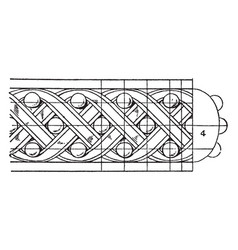 antique enrichment torus moulding pilaster vector image