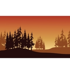 Silhouette of spruce in hills vector image