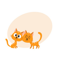 Two cute and funny curious cuddling red cat vector