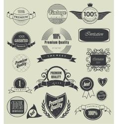 label typography calligraphic design elements vector image