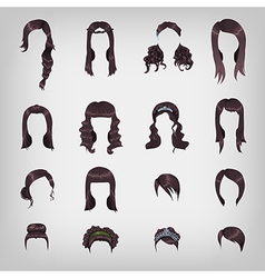 Assortment of female brunette hair vector image
